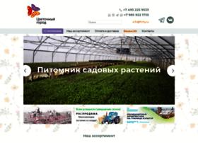 Flcity.ru thumbnail