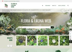 Florafaunaweb.nparks.gov.sg thumbnail