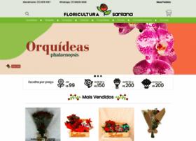 Floriculturasantana.com.br thumbnail
