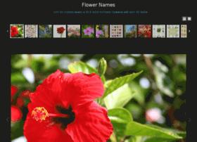 Flowernames.co thumbnail