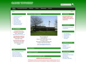Gainestownship.net thumbnail