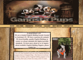 Gangstapups.com thumbnail