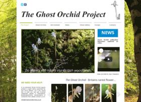 Ghostorchidproject.co.uk thumbnail