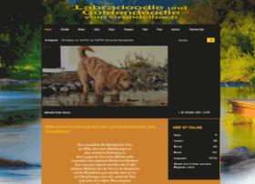 Goldendoodle-vom-gruendelbach.de thumbnail