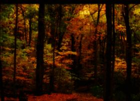 Greencoalitionverte.ca thumbnail