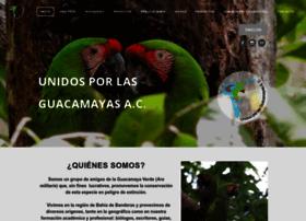 Guacamayasparasiempre.org thumbnail