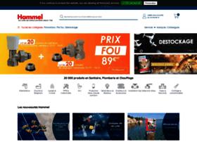 Hammel.fr thumbnail
