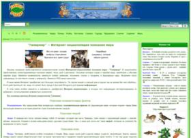 Hipermir.ru thumbnail