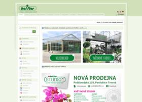 Holflor.cz thumbnail