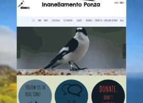 Inanellamentoponza.it thumbnail