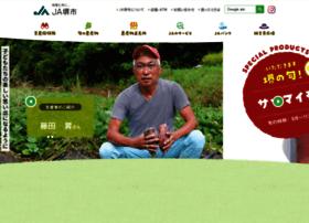 Ja-sakai.or.jp thumbnail