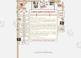 Kardiologiaweterynaryjna.pl thumbnail
