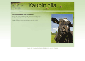 Kaupintila.fi thumbnail