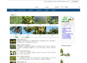 Kdbl.org thumbnail