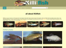 Killi.co.uk thumbnail