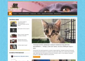 Kotsf.ru thumbnail