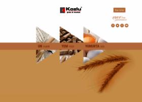 Kozlu.com.tr thumbnail