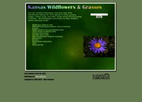 Kswildflower.org thumbnail