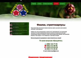 Kvitka-krasa.com.ua thumbnail