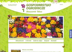 Kwiaty-wrocki.pl thumbnail
