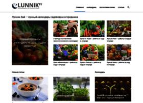 Lunnik.by thumbnail