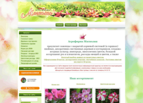 Magnolia45.ru thumbnail