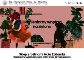 Malaszklarnia.pl thumbnail
