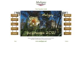 Maligny.net thumbnail