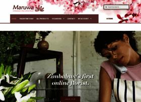 Maruwa.co.zw thumbnail
