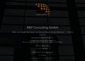Mef-consulting.de thumbnail