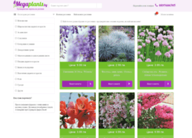 Megaplants.bg thumbnail