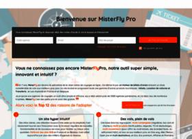Misterflypro.com thumbnail
