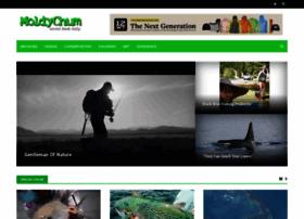Moldychum.com thumbnail