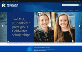 Msuinvasiveplants.org thumbnail