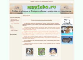 Msvinka.ru thumbnail