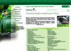 Mybirds.ru thumbnail