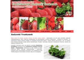 Najtansze-sadzonki.pl thumbnail