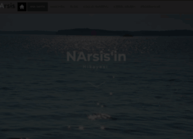 Narsis.net thumbnail