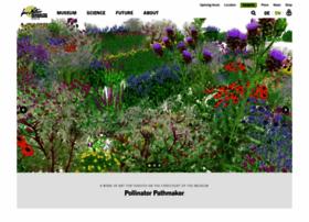 Naturkundemuseum-berlin.de thumbnail