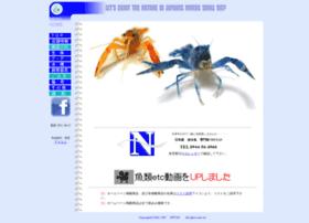 Nittan.net thumbnail