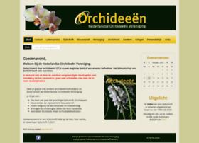 Nov-orchidee.nl thumbnail