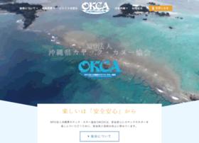 Npo-okca.or.jp thumbnail