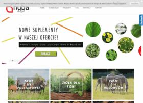 Nubaequi.pl thumbnail
