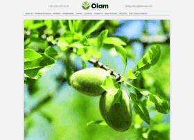 Olamturkey.com thumbnail