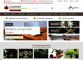 Orchideeen-shop.nl thumbnail