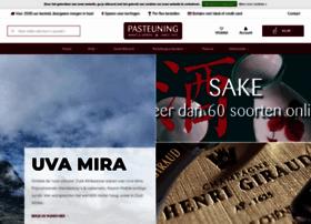 Pasteuning.nl thumbnail