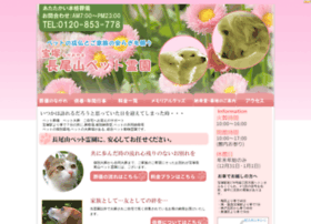 Petreien.jp thumbnail