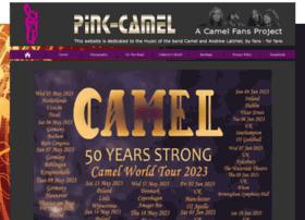 Pink-camel.de thumbnail