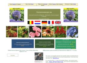 Plantenkwekerijen.be thumbnail