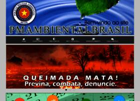 Pmambientalbrasil.org.br thumbnail